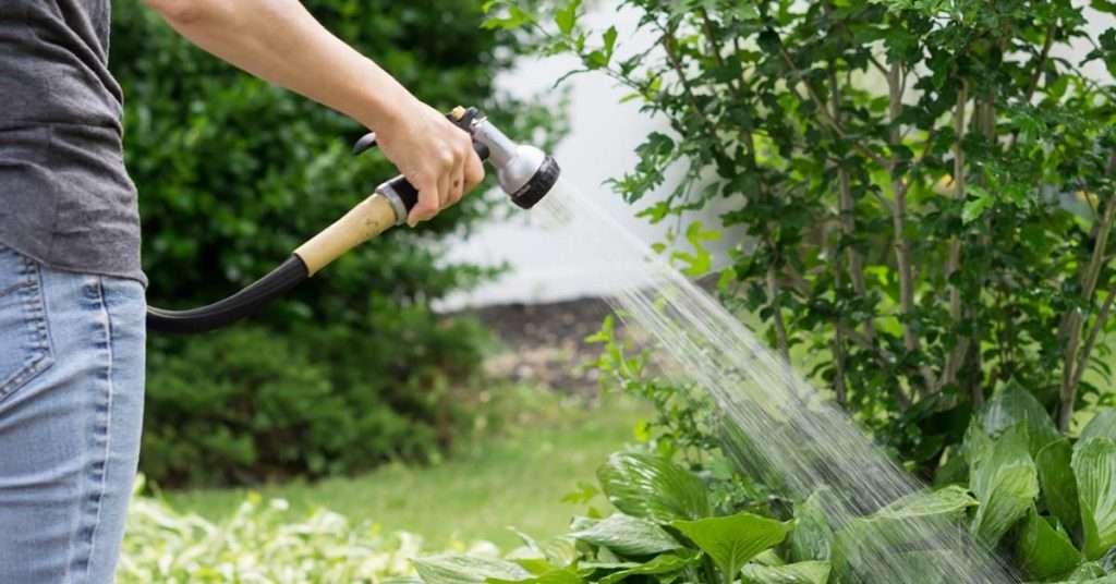 what is in your garden water