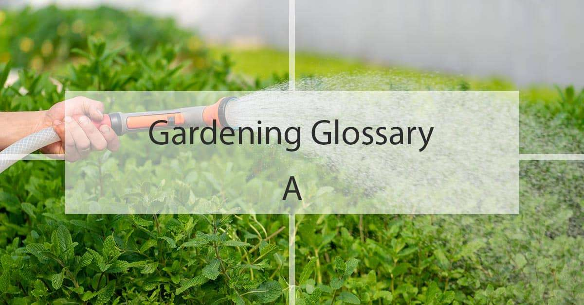 Gardening Glossary A