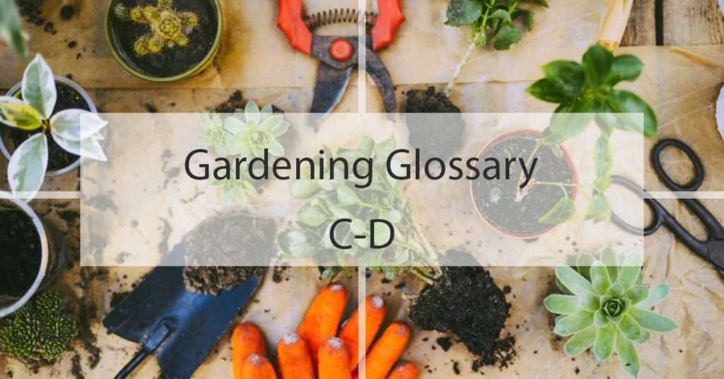 Gardening Glossary C-D