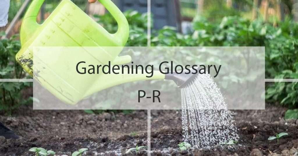 Gardening Glossary P-R