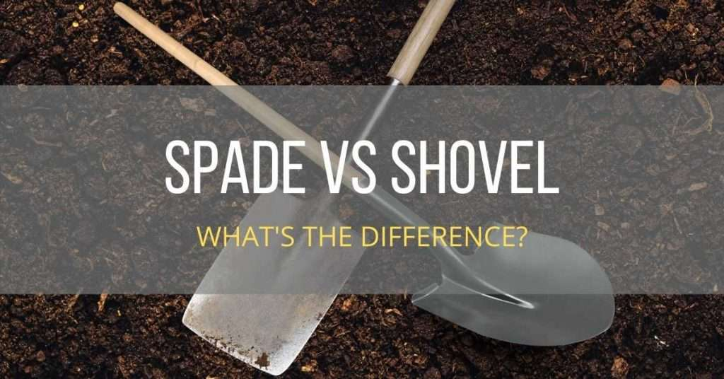 spade vs shovel whats the difference