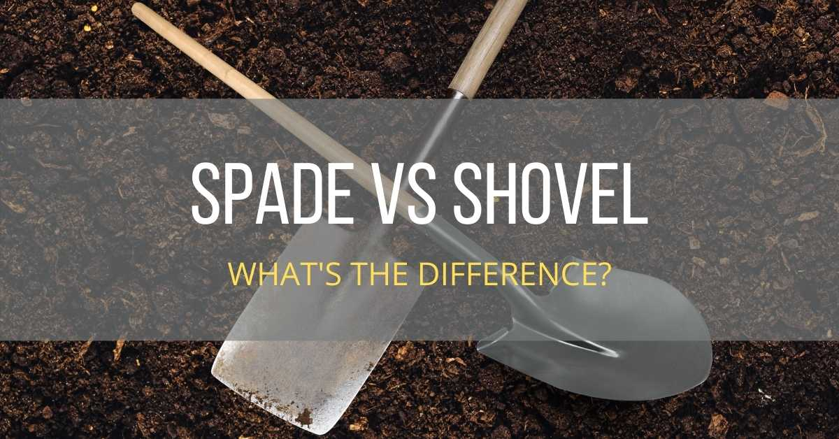What is the Difference Between a Shovel and a Spade: Shovel vs Spade